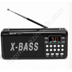 Радио RX BT204L
