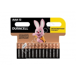 Батарейки Duracell AAA LR03MN2400 (12 шт.)